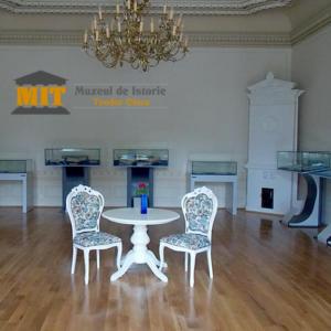 sala-mare-muzeul-de-istorie-teodor-cincu-tecuci