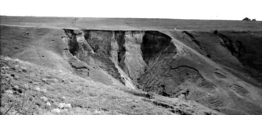 Situl arheologic Toflea