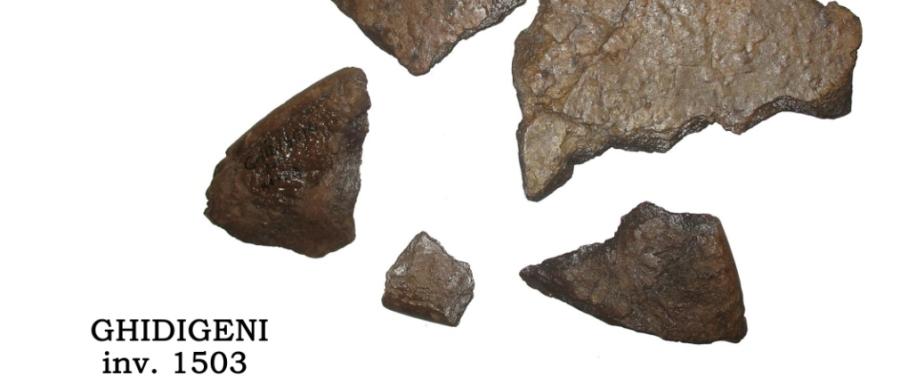 Depozitul de topoare de la Ghidigeni